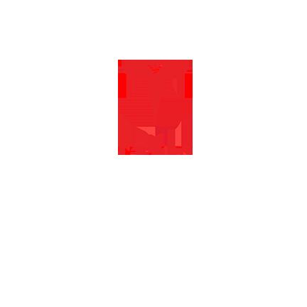 T-shirt Tesla-78