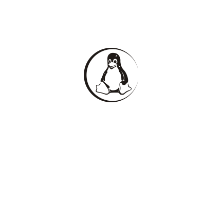 T-shirt-Linux penguin-P13